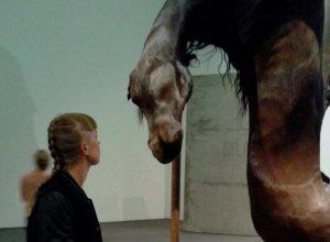 horse berlinde